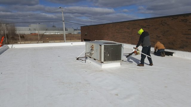 Wayne county commercial roof